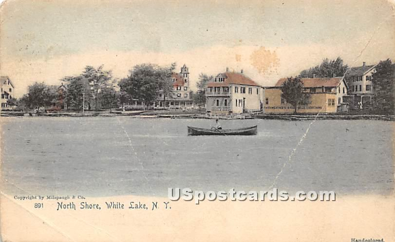 North Shore - White Lake, New York NY Postcard