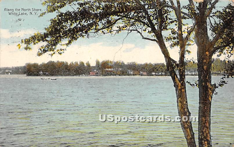 Along the North Shore - White Lake, New York NY Postcard