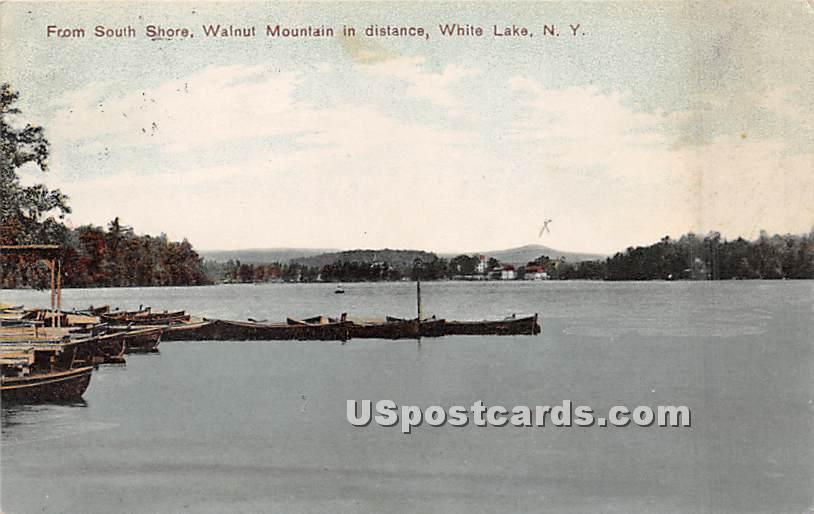 From South Shore - White Lake, New York NY Postcard