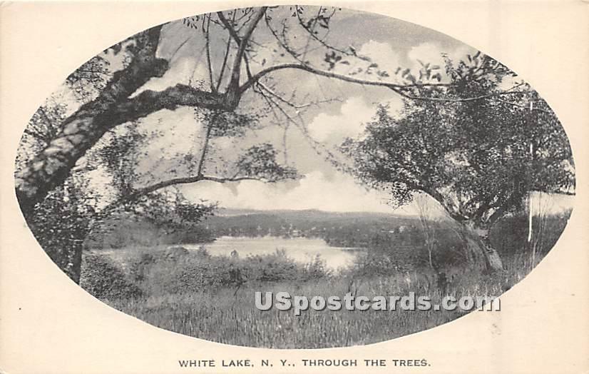 Through the Trees - White Lake, New York NY Postcard