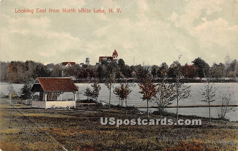Looking East From North White Lake - New York NY Postcard