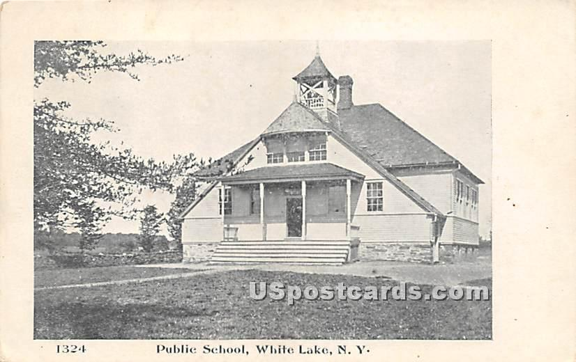 Public School - White Lake, New York NY Postcard