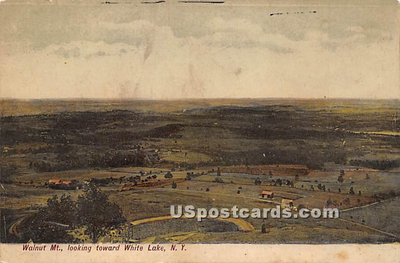 Walnut Mountain - White Lake, New York NY Postcard