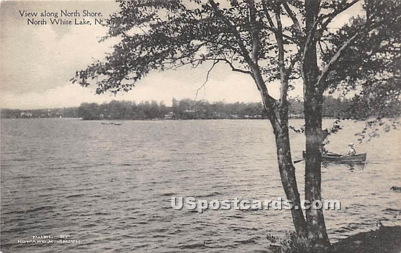 View along North Shore - White Lake, New York NY Postcard