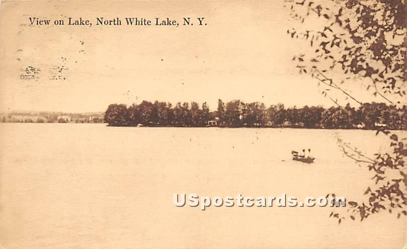 View on Lake - White Lake, New York NY Postcard