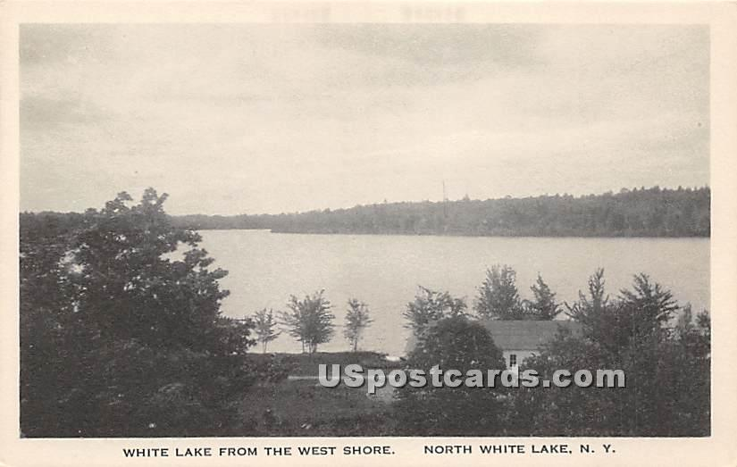 White Lake from the West Shore - New York NY Postcard