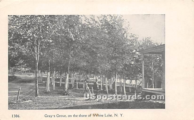 Gray's Grove - White Lake, New York NY Postcard