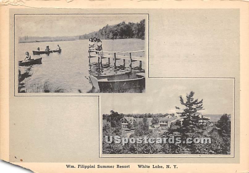 Wm Filippini Summer Resort - White Lake, New York NY Postcard