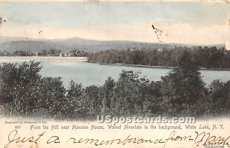 From the Hill near Mansion House - White Lake, New York NY Postcard