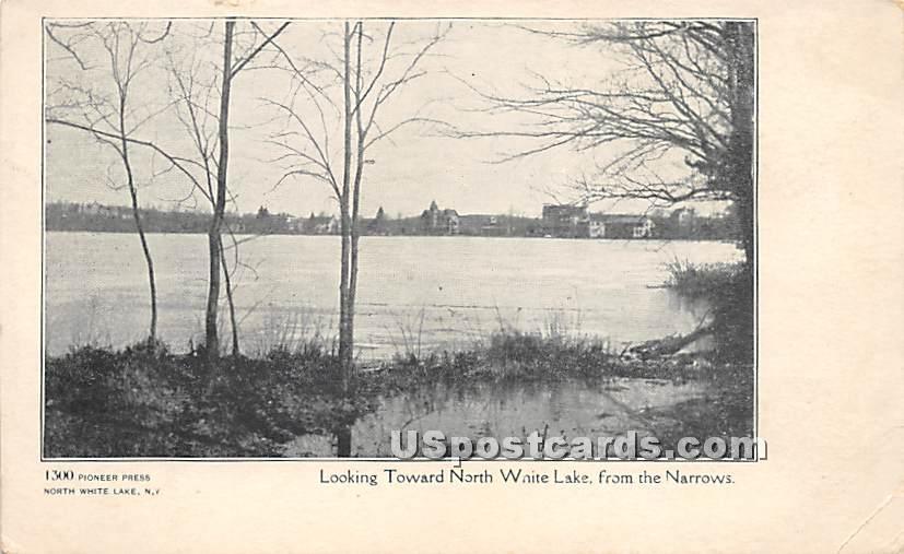 Looking Toward North White Lake - New York NY Postcard