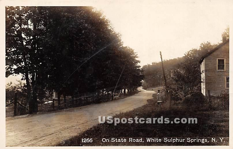 On State Road - White Sulphur Springs, New York NY Postcard