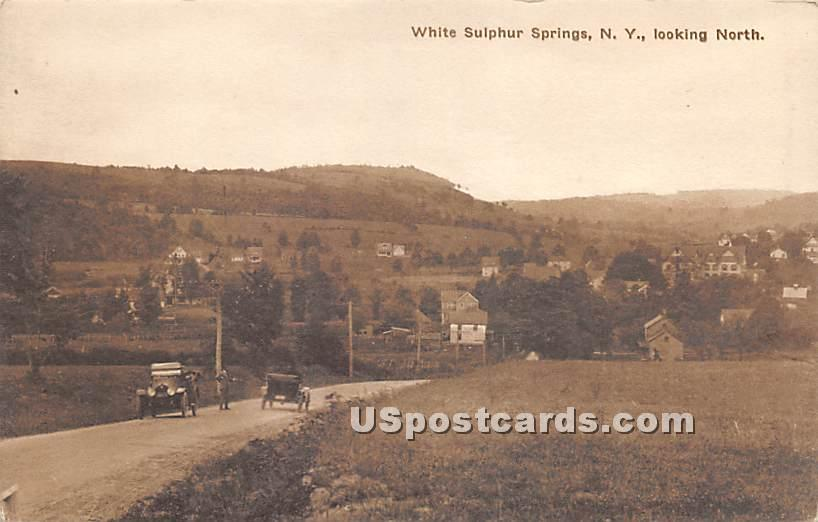 Looking North - White Sulphur Springs, New York NY Postcard