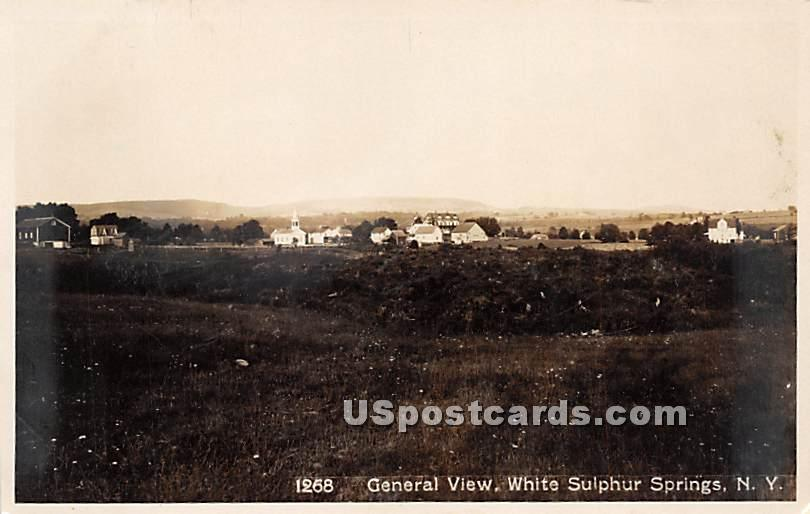 General View - White Sulphur Springs, New York NY Postcard