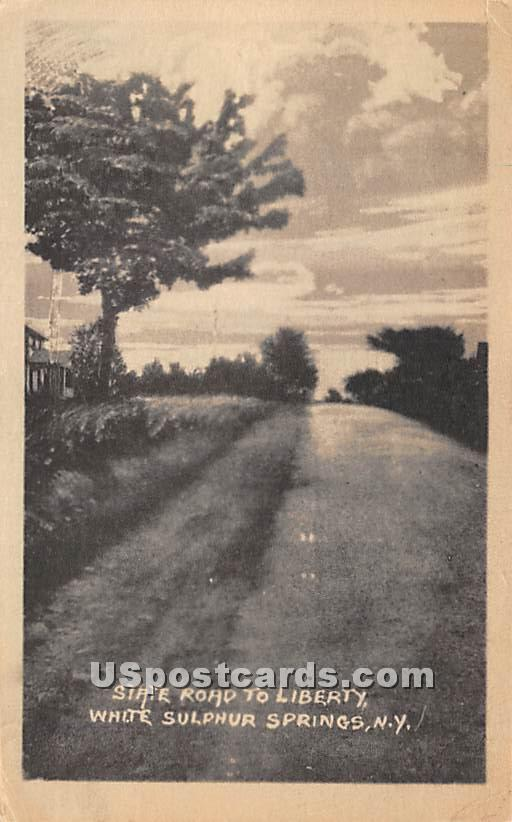 State Road to Liberty - White Sulphur Springs, New York NY Postcard