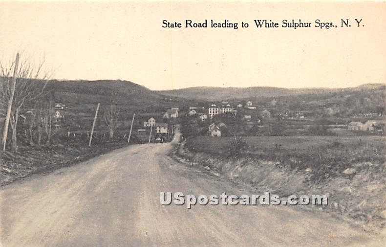 State Road - White Sulphur Springs, New York NY Postcard