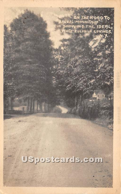 On the Road to Barrel Mountain - White Sulphur Springs, New York NY Postcard