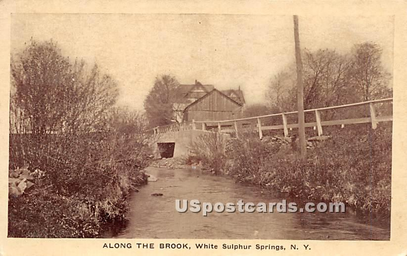 Along the Brook - White Sulphur Springs, New York NY Postcard