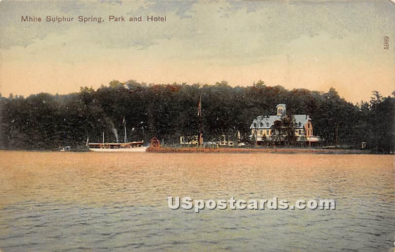 Park and Hotel - White Sulphur Springs, New York NY Postcard