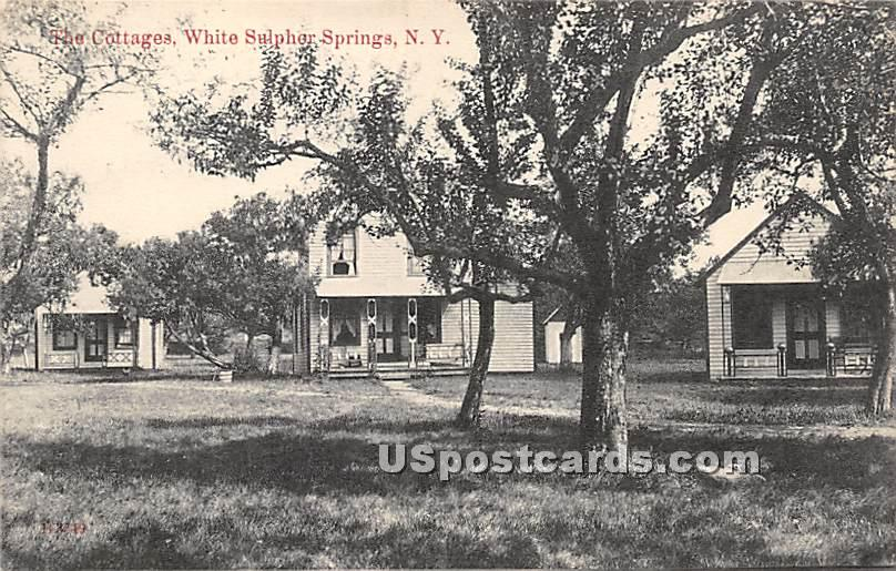 The Cottages - White Sulphur Springs, New York NY Postcard