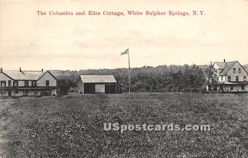 The Columbia and Elite Cottages - White Sulphur Springs, New York NY Postcard
