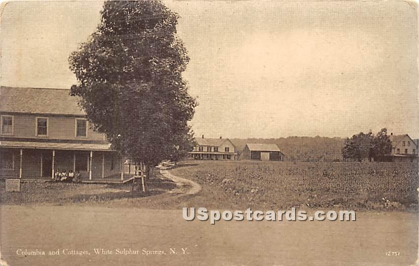 Columbia and Cottages - White Sulphur Springs, New York NY Postcard