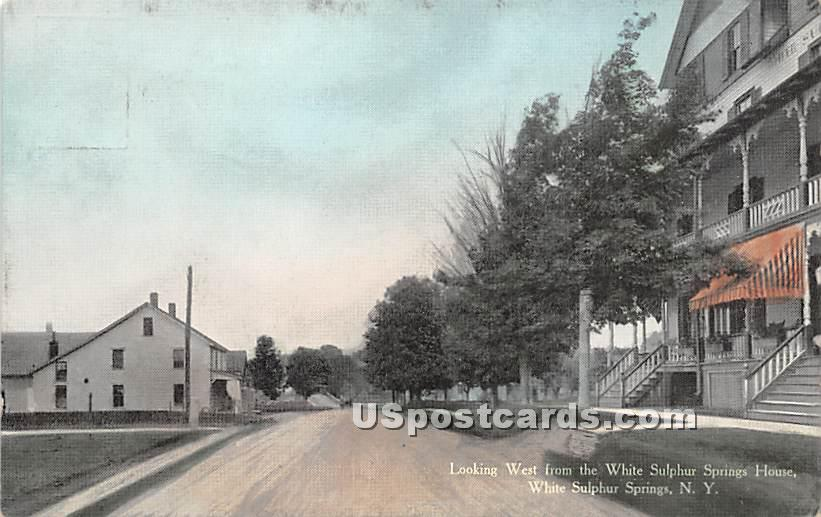 Looking West from White Sulphur Springs House - New York NY Postcard
