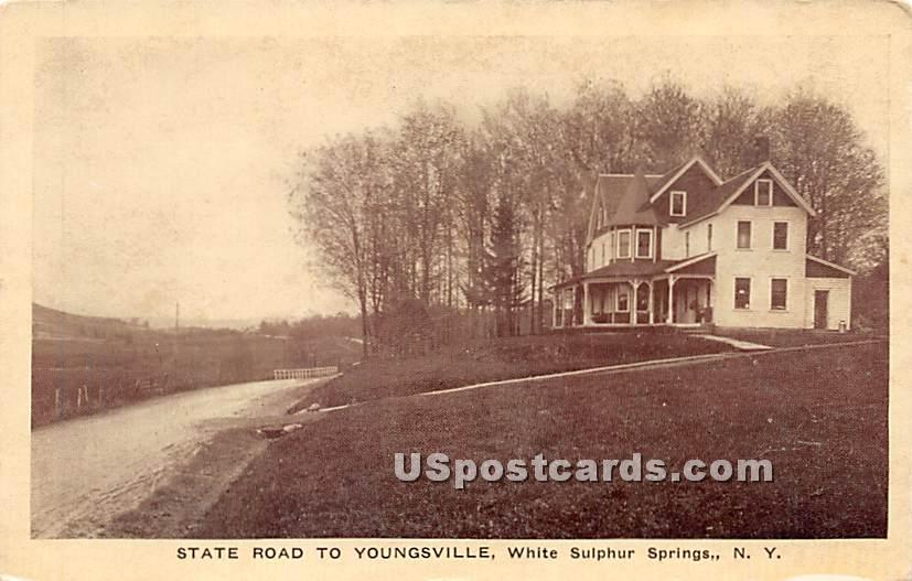State Road to Youngsville - White Sulphur Springs, New York NY Postcard