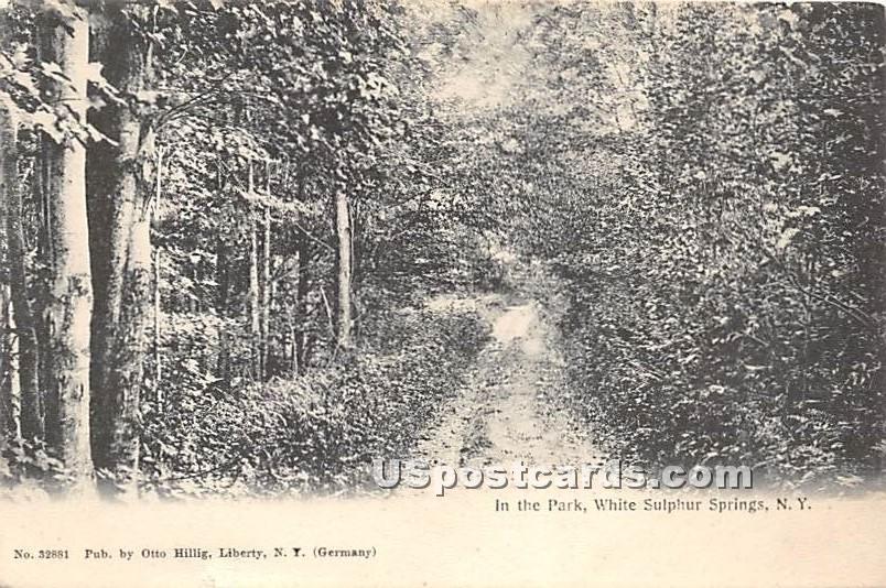 In the Park - White Sulphur Springs, New York NY Postcard