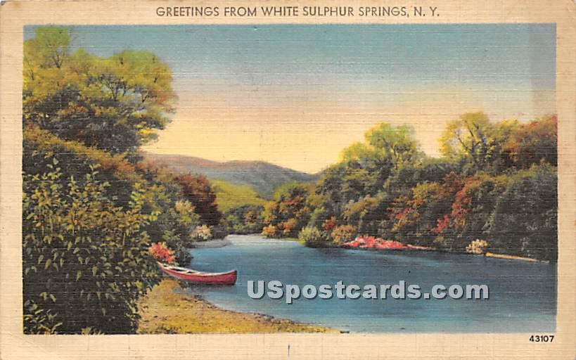 Greetings from - White Sulphur Springs, New York NY Postcard