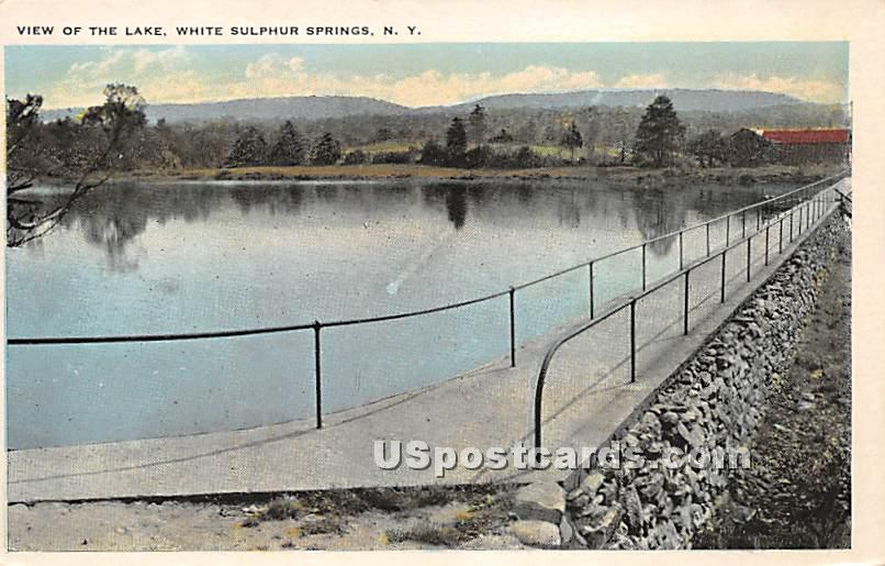 View of the Lake - White Sulphur Springs, New York NY Postcard