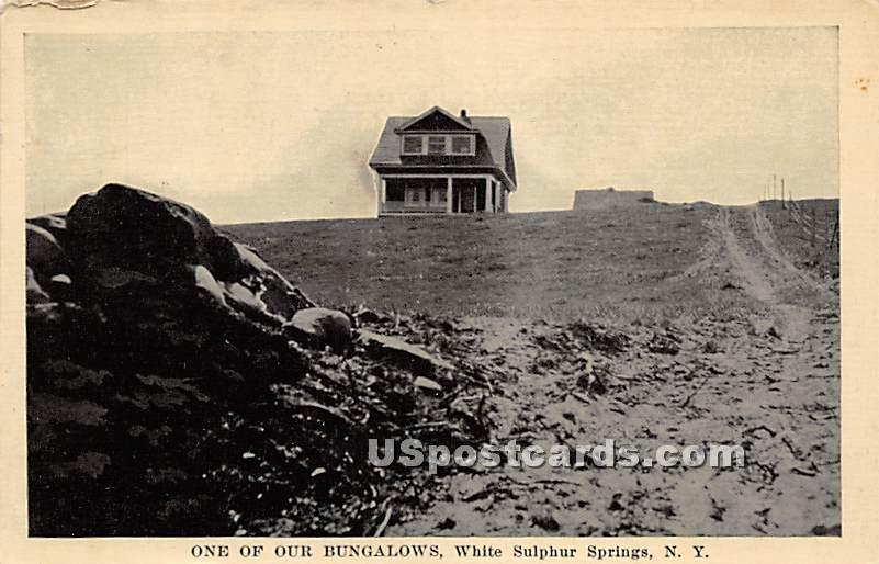 One of Our Bungalows - White Sulphur Springs, New York NY Postcard