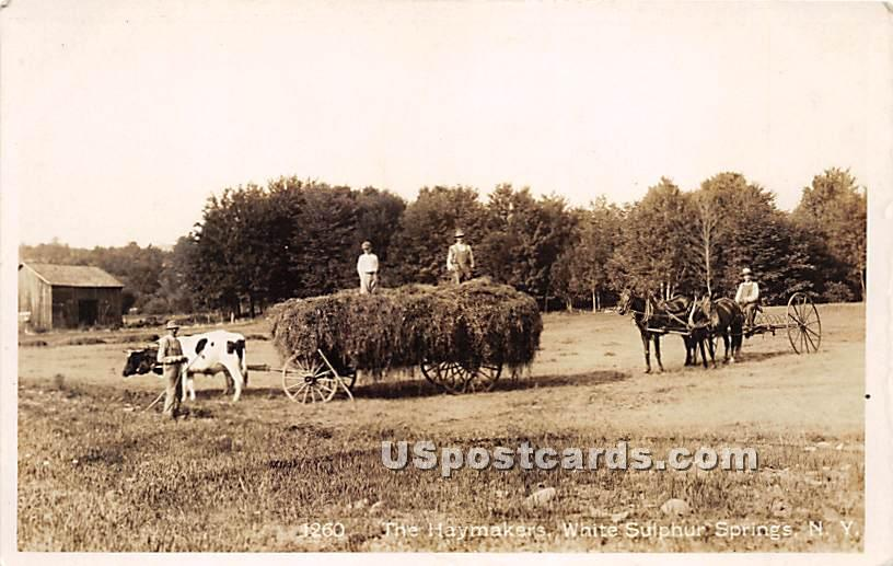 Haymakers - White Sulphur Springs, New York NY Postcard