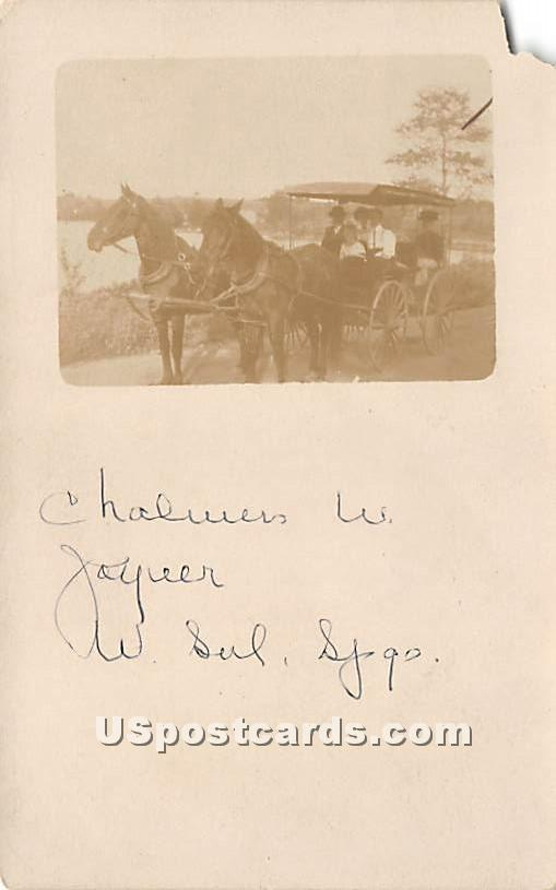 Horse and Carriage - White Sulphur Springs, New York NY Postcard