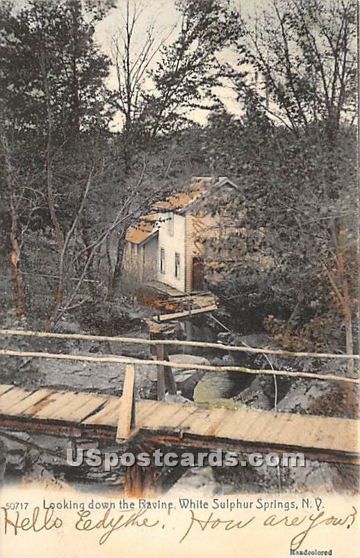 Looking down the Ravine - White Sulphur Springs, New York NY Postcard