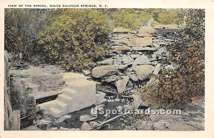 View of the Springs - White Sulphur Springs, New York NY Postcard