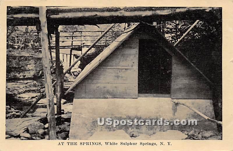 At the Springs - White Sulphur Springs, New York NY Postcard