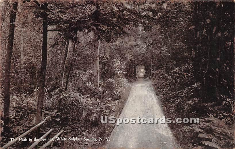 The Path to the Springs - White Sulphur Springs, New York NY Postcard