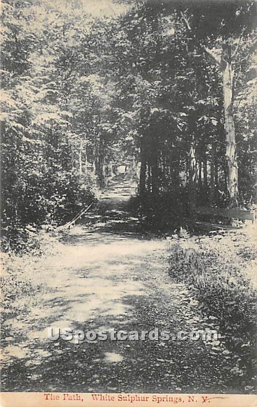 The Path - White Sulphur Springs, New York NY Postcard