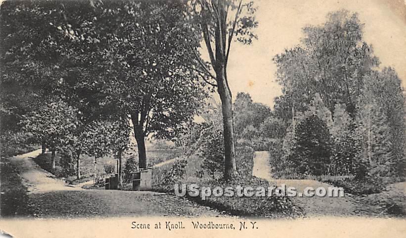 Scene at Knoll - Woodbourne, New York NY Postcard