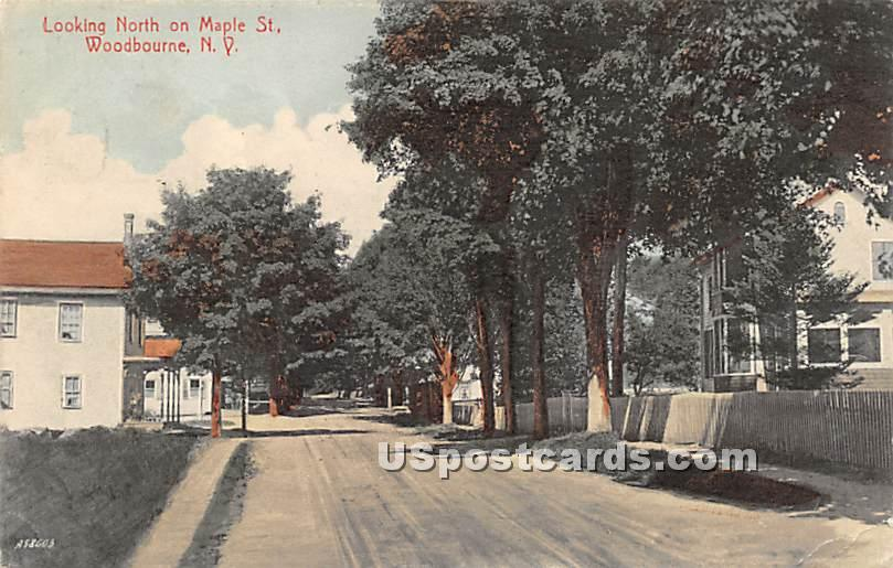 Looking North on Maple Street - Woodbourne, New York NY Postcard