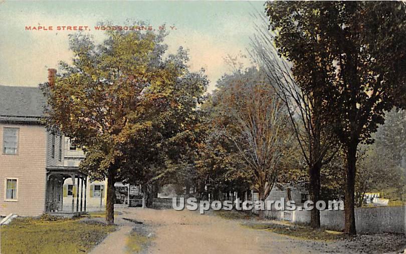 Maple Street - Woodbourne, New York NY Postcard