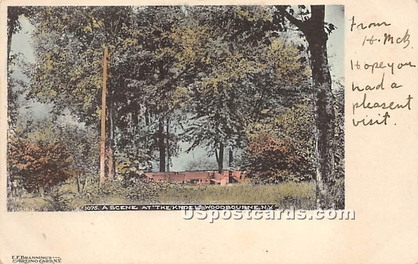 Scene at The Knoll - Woodbourne, New York NY Postcard