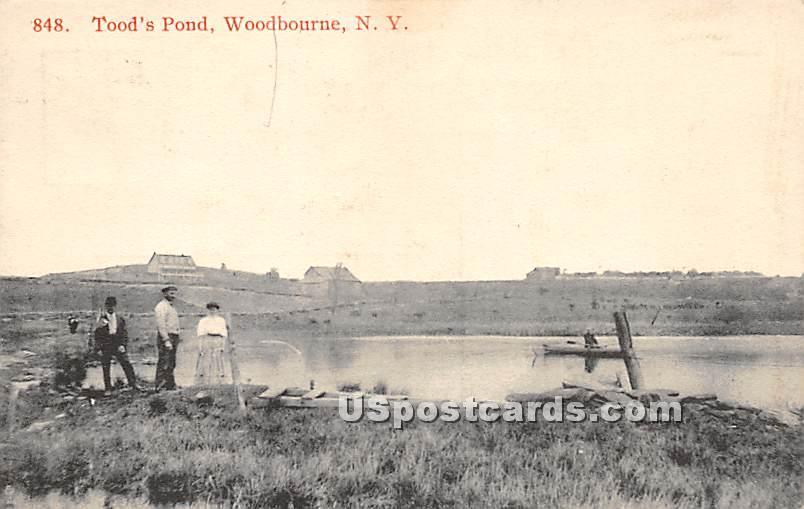 Tood's Pond - Woodbourne, New York NY Postcard