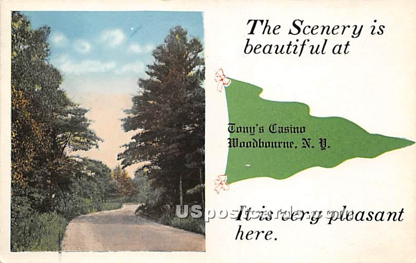 Scenery is Beautiful - Woodbourne, New York NY Postcard