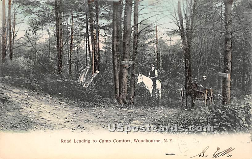 Road Leading to Camp Comfort - Woodbourne, New York NY Postcard