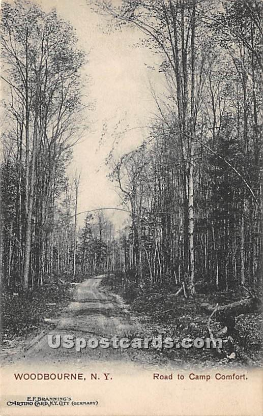 Road to Camp Comfort - Woodbourne, New York NY Postcard