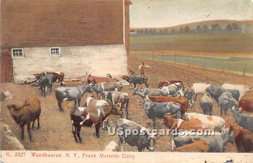 Frank Merretts Dairy - Woodbourne, New York NY Postcard