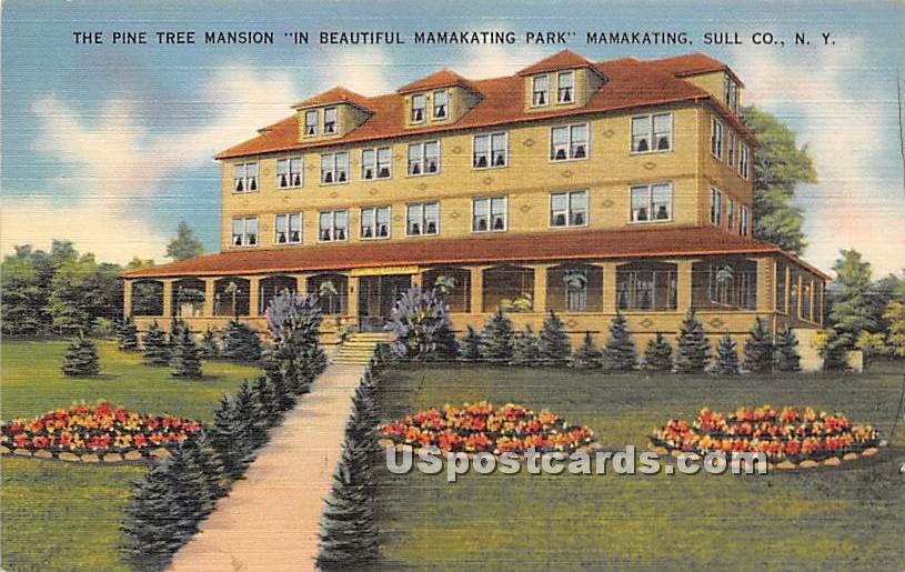 Pine Tree Mansion - Wurtsboro, New York NY Postcard