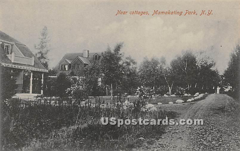Near Cottages - Wurtsboro, New York NY Postcard