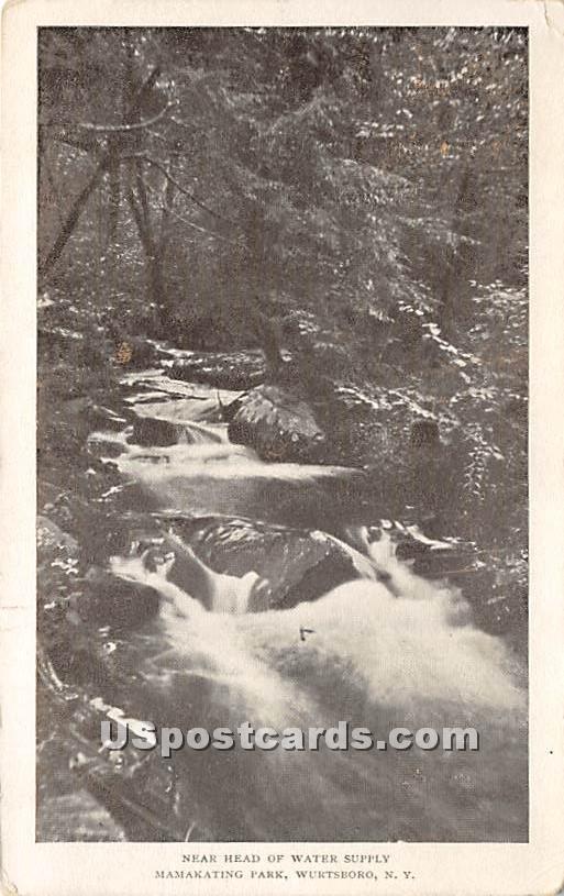 Near Head of Water Supply - Wurtsboro, New York NY Postcard